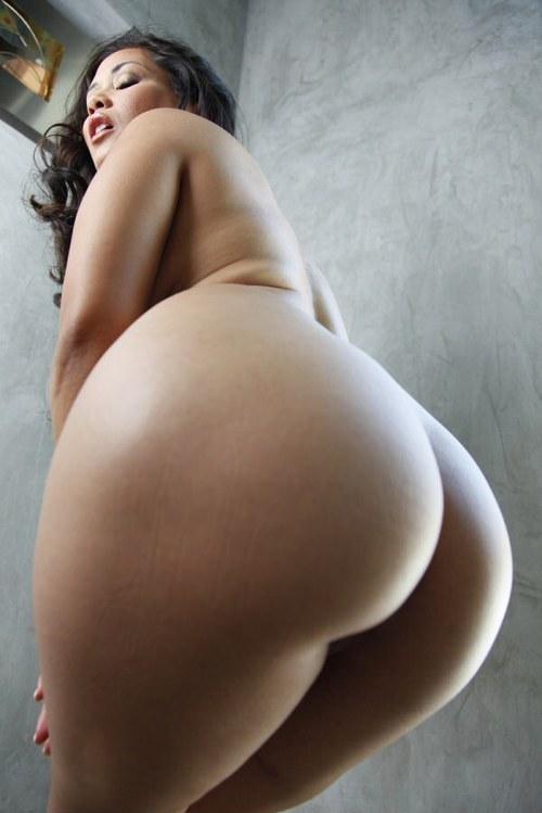 Beautiful Huge Asses Photo Album - Amateur Adult Gallery